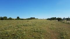 Prairie_terrain_foot_bas[1]