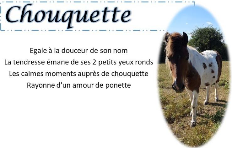 fiche-chouquette.jpg