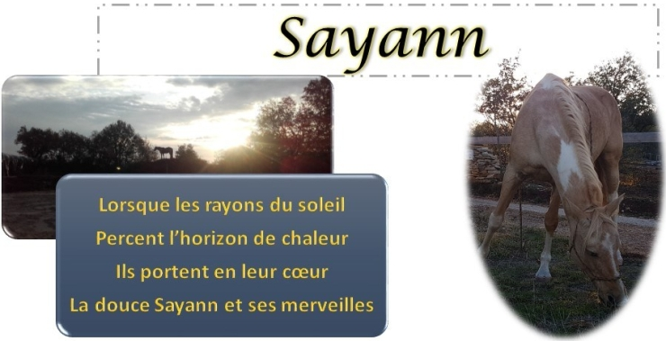 Fiche Sayann