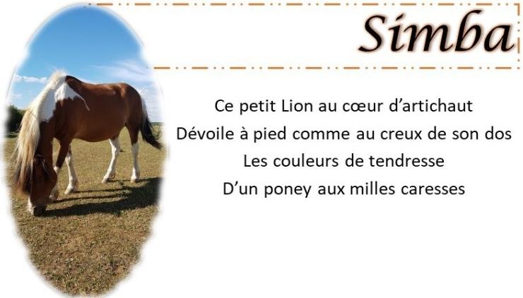 fiche-simba-2-e1539971208233.jpg